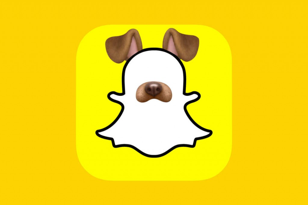 A picture of a snapchat dog.